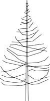 dwg درختان و گیاهان فایل Autocad