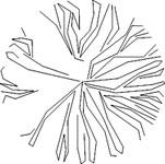 dwg پلان درختان و گیاهان Autocad